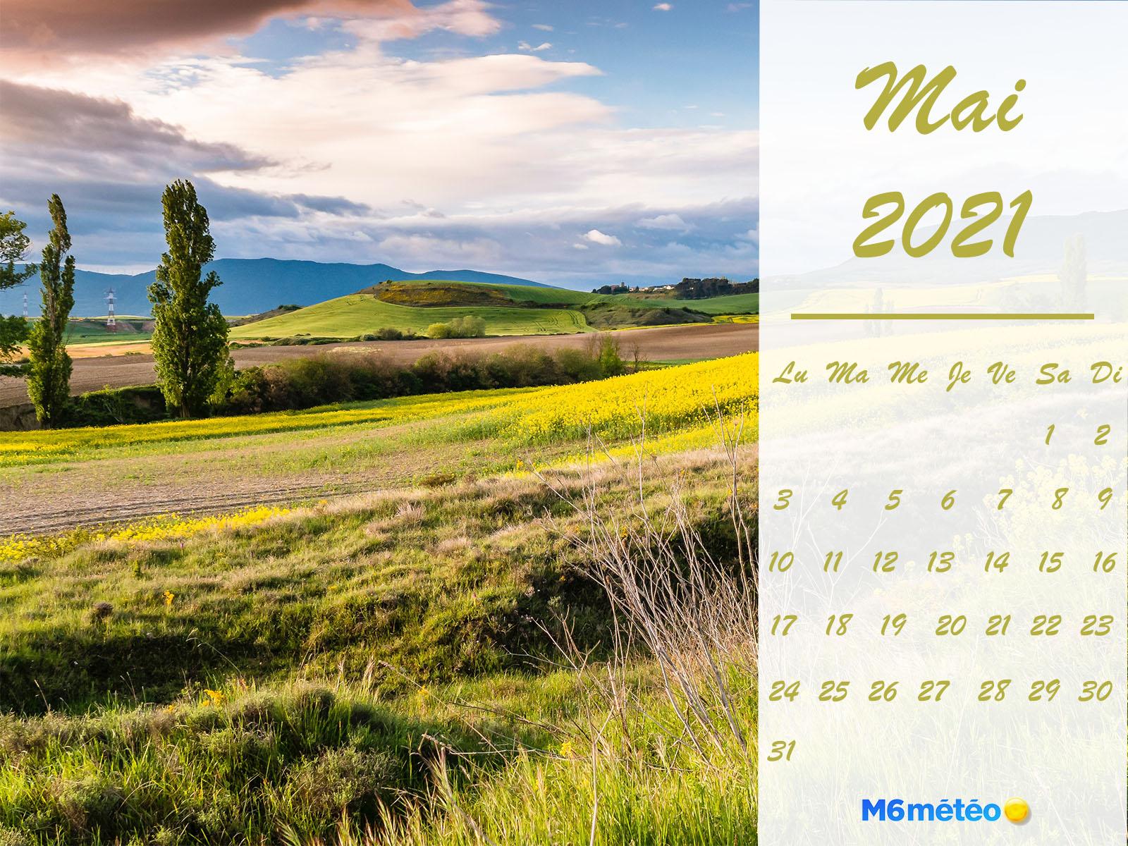 Calendrier Février 2021 normal