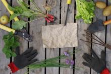 Comment réaliser une jardinière verticale avec une palette?